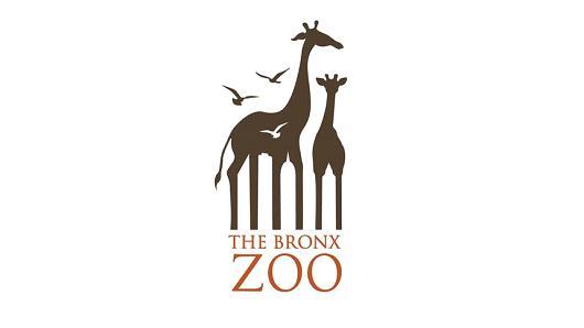 Estos son los secretos detrás de 15 diferentes logos ...  |Bronx Zoo Logo
